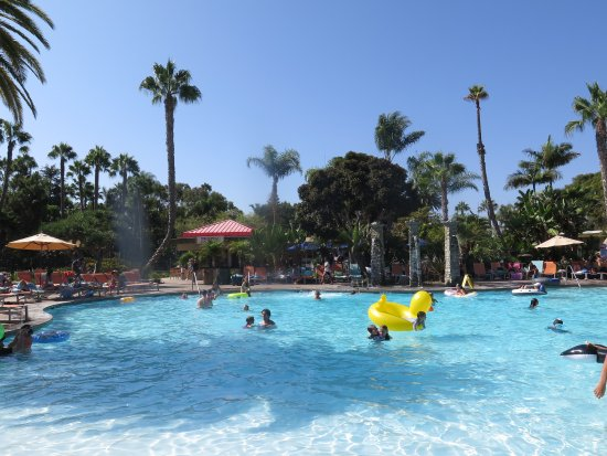 Paradise Point Resort & Spa: Main pool