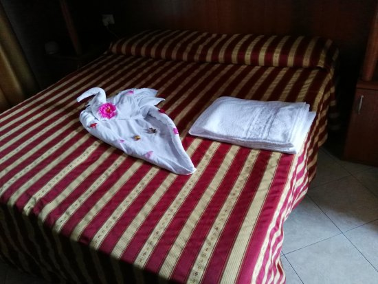 Hotel Storione: IMG_20170817_185133_large.jpg