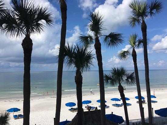 Doubletree Beach Resort by Hilton Tampa Bay / North Redington Beach-billede