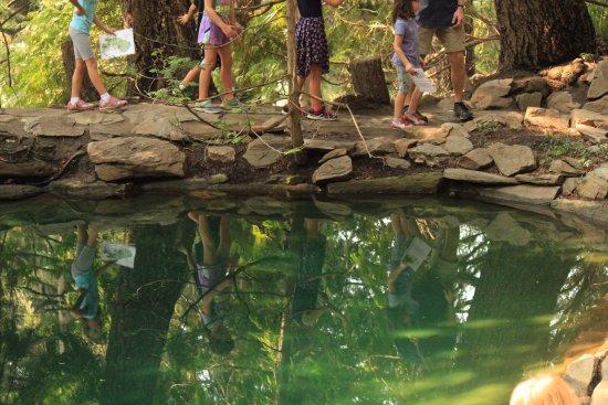 Wenatchee, WA: Enjoy the reflective ponds.