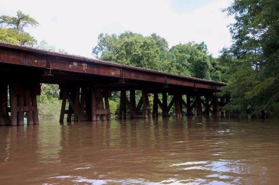 Pearl River, LA: Train trestle bridge on the way to swamp.
