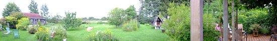 La Baie, Canada: Backyard