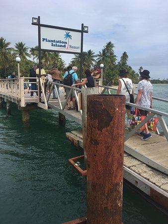 Plantation Island Resort: photo0.jpg