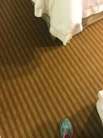 Hampton Inn & Suites Atlantic Beach: photo9.jpg