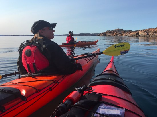 Iqaluit, Kanada: Watching Peregrine Falcons