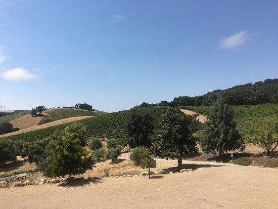 Paso Robles, CA: photo3.jpg