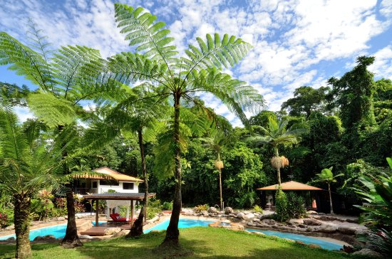 Bellenden Ker, Australia: Blue Lagoon Villa private pool, villa and glass bar set in stunning tropical gardens
