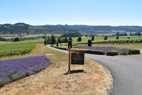 King Estate Winery: Leaving the King Estate grounds