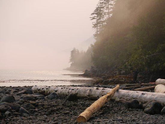 Quadra Island, Canada: Foggy early morning