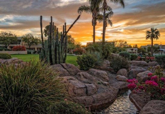 Paradise Valley, AZ: Arizona Sunsets