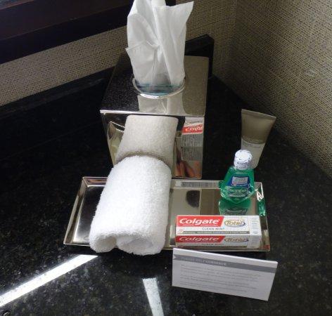 Hyatt Regency San Antonio: Both shampoo and conditioner missing.