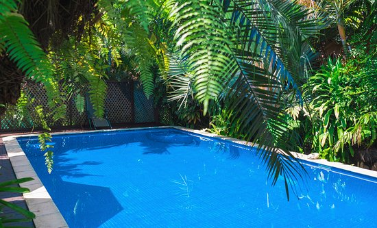 Lynn's Getaway Hotel: Relax by the pool surrounded by lush greenery.