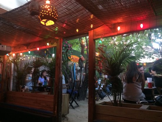Photo of Surf Bar in Brooklyn, NY, US