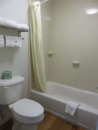 Best Western Central Inn: Tub and toilet separate from sink/vanity area