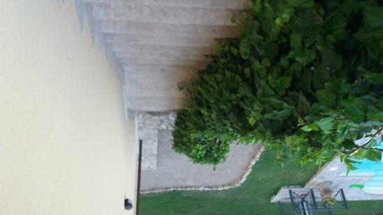 蒙提格特公園飯店照片