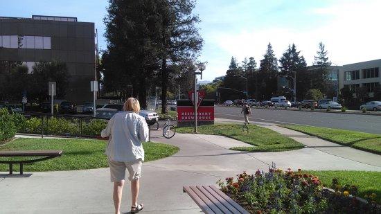 Cupertino, CA: outside