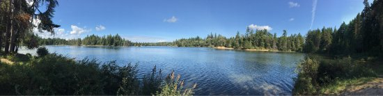 Spider Lake Provincial Park: photo1.jpg