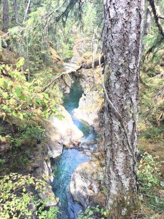 Little Qualicum Falls Provincial Park: photo1.jpg
