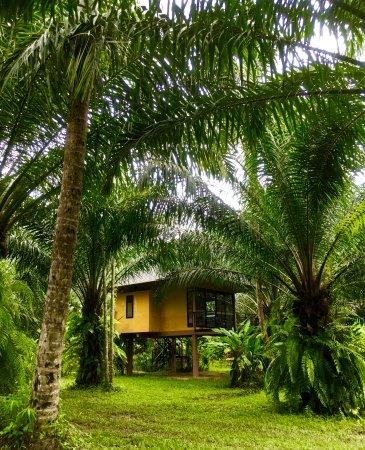 คลองศก, ไทย: Deluxe King bungalow
