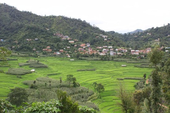 Balthali, Nepal: IMG-20170821-WA0019_large.jpg
