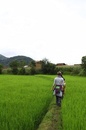 Balthali, Nepal: IMG-20170821-WA0017_large.jpg