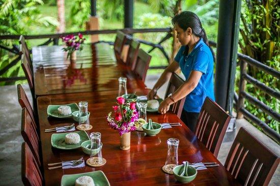 คลองศก, ไทย: Setting lunch table in Hornbill restaurant