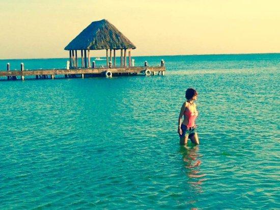 Fb img 1483724234335 picture of villas hm for Villas hm paraiso del mar holbox tripadvisor