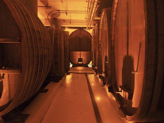 CATTIN - Grands Vins & Cremants d'Alsace