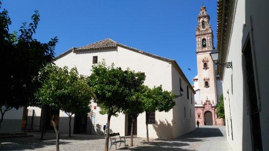 Palma Del Rio, Spain: Fachada del Museo Municipal de Palma del Río, con la Iglesia de la Asunción al fondo.