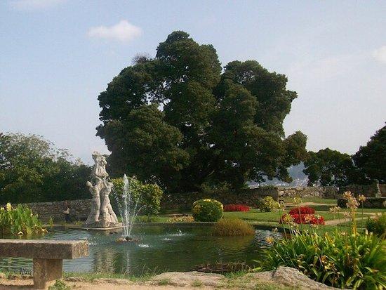 Fortaleza de O Castro: Parque y fuente