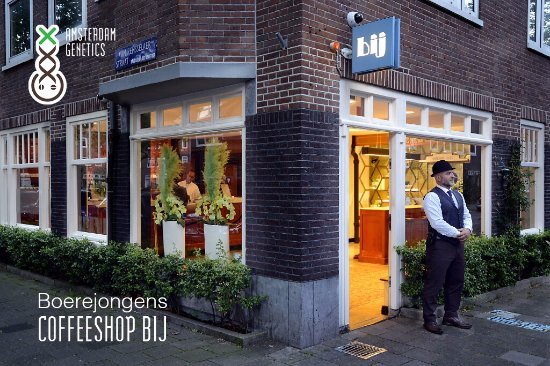 Amsterdam, Pays-Bas: Boerejongens Coffeeshop BIJ