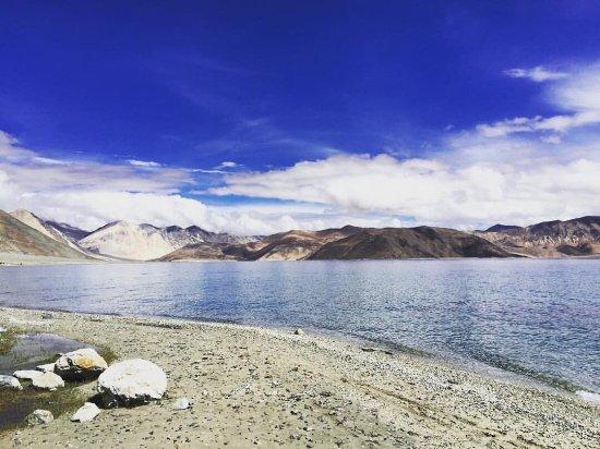 Pangong Lake View Camps