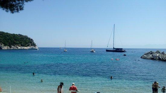 Stafilos Beach : Αρκετά κότερα έρχονται στον όρμο της παραλίας