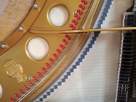 Pianos Steingraeber & Sohne
