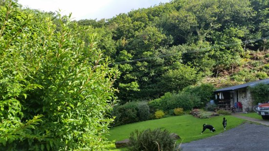 Llanelltyd, UK: Beautiful scenery around Coedcae Bed and Breakfast..
