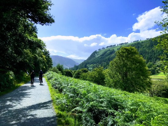 The Green Road from Laragh to Glendalough