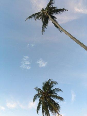 Longbay Resort: photo2.jpg