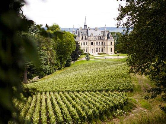 Épernay, Frankrike: Vineyard and Castle
