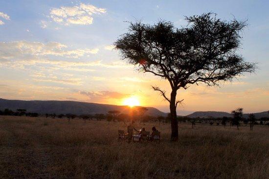 Landscape - Picture of Nimali Central Serengeti, Serengeti National Park - Tripadvisor
