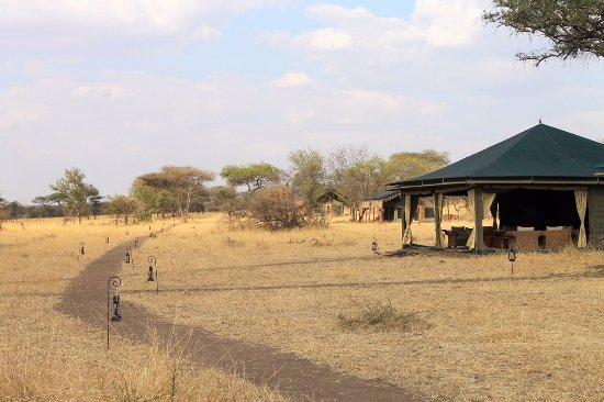 Entrance - Picture of Nimali Central Serengeti, Serengeti National Park - Tripadvisor