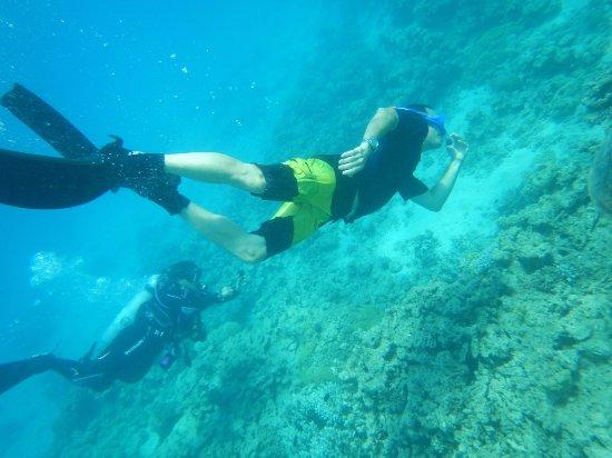 Arpora, Ινδία: Snorkeling at Goa