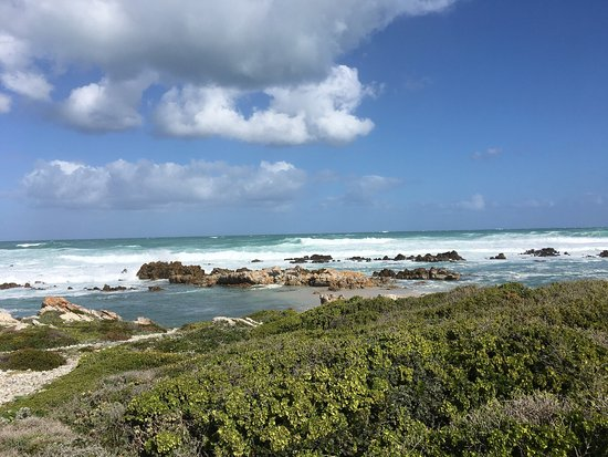 Cape Agulhas, Zuid-Afrika: photo6.jpg
