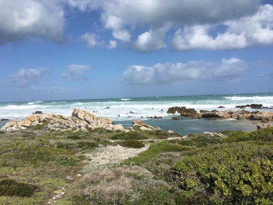 Cape Agulhas, Sudáfrica: photo7.jpg