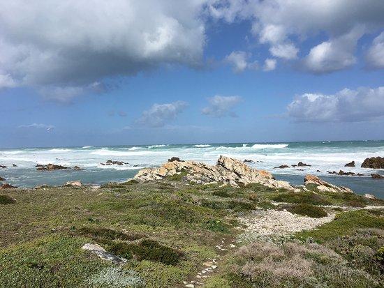 Cape Agulhas, Zuid-Afrika: photo8.jpg