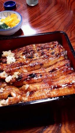 Abiko, Japonya: ちょっと食べたうなぎの写真