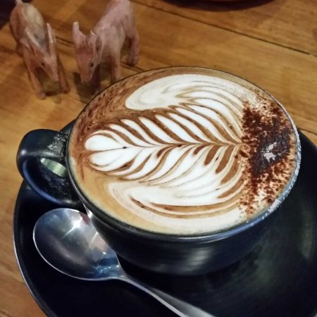 Mount Evelyn, Australia: goaty wants a coffee