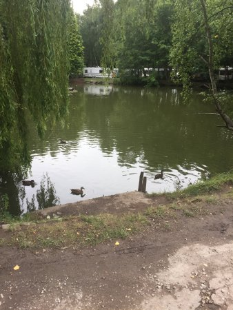 Holmfirth, UK: photo2.jpg
