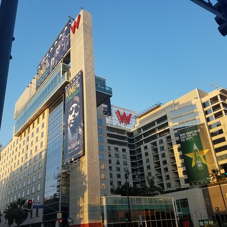 mmexport1503629552315_large.jpg - Picture of W Hollywood ...