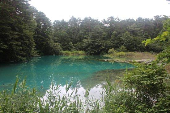 Kitashiobara-mura, اليابان: 20170820110918_IMG_1025_large.jpg