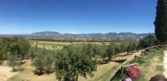 Romanelli Agricola : photo0.jpg